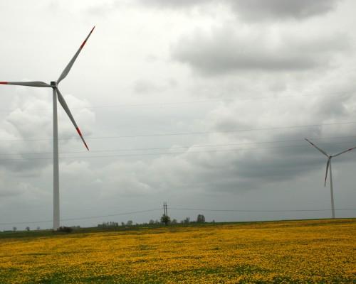 Vėjo jėgainių statyba